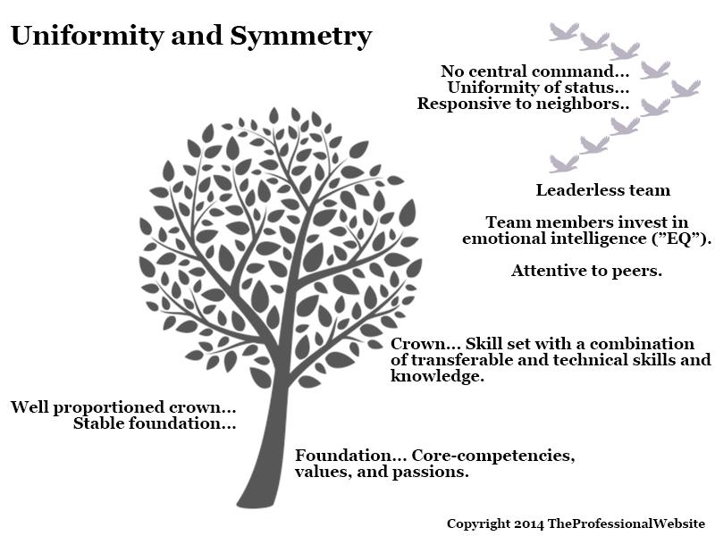 Uniformity & Symmetry